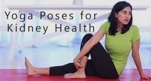 yoga for kidney