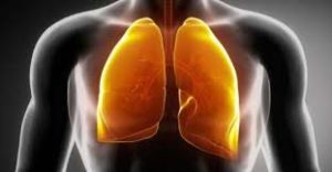 herbs for lungs