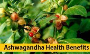 Health Benefits By Eating Ashwagandha