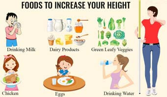 Foods That Help To Increase Height